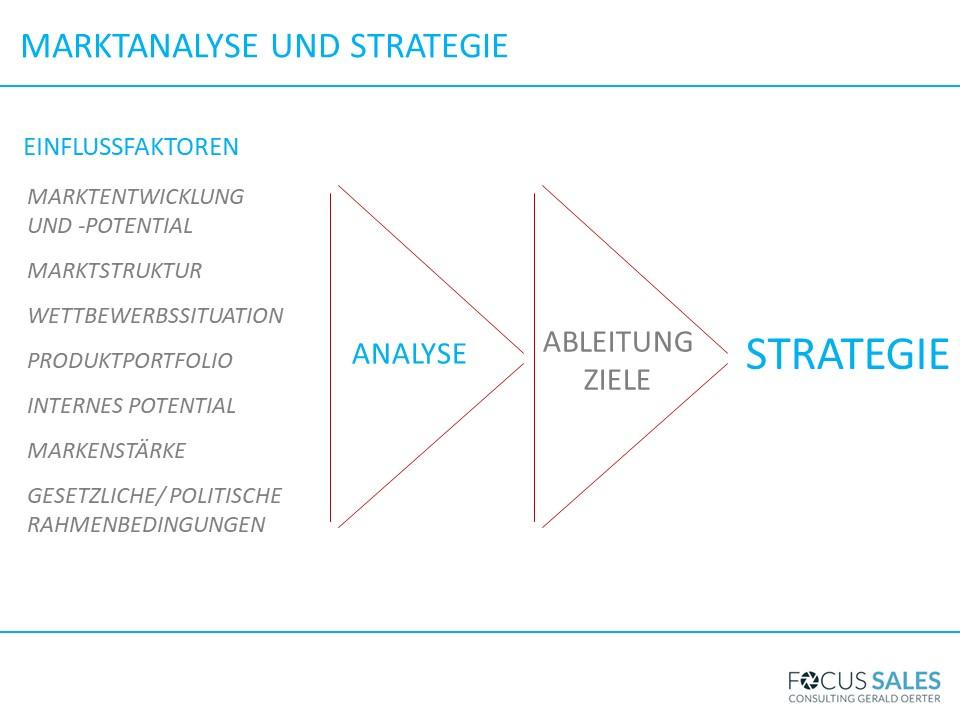Einflussfaktoren auf die Strategie